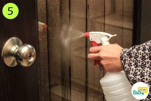 spray the solution and clean to clean glass windows and doors