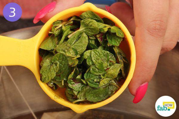 Add mint leaves