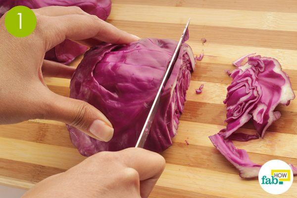 chop red cabbage test the ph level of your soil without a kit