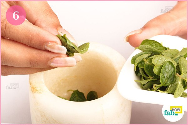 Put mint leaves in mortar