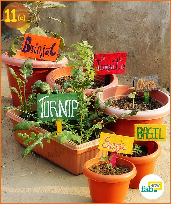 New signs in your garden