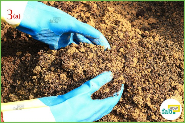Mix soil and compost