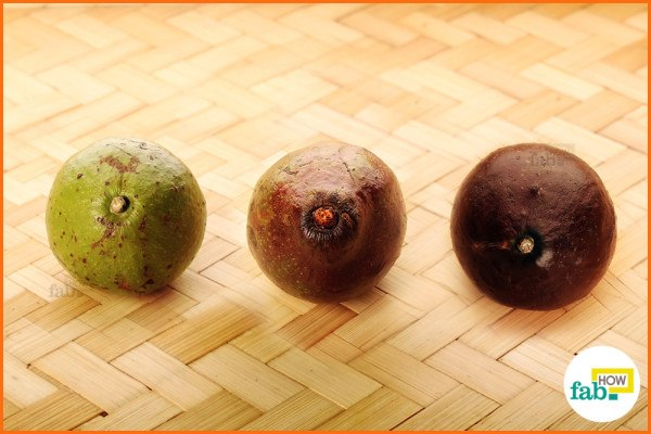Avocado ripe or not