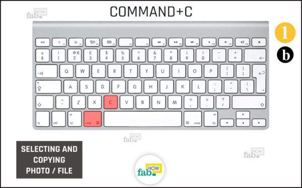 Press command c
