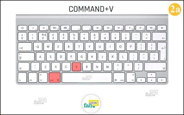 Press command v
