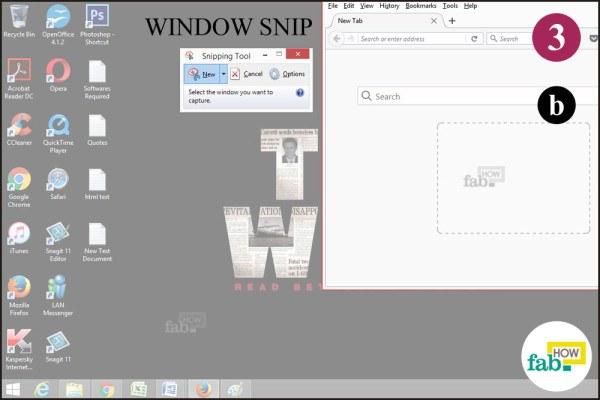 Take window snip