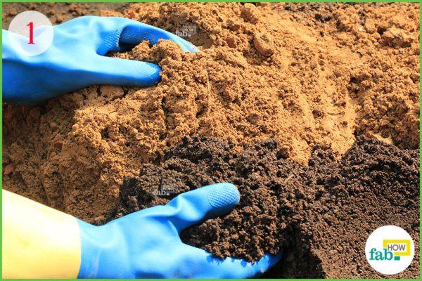 prepare the soil