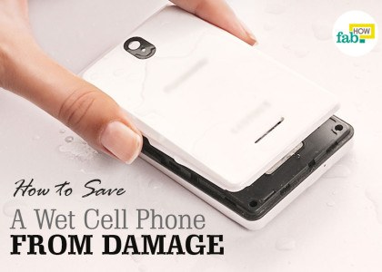 fix wet cell phone