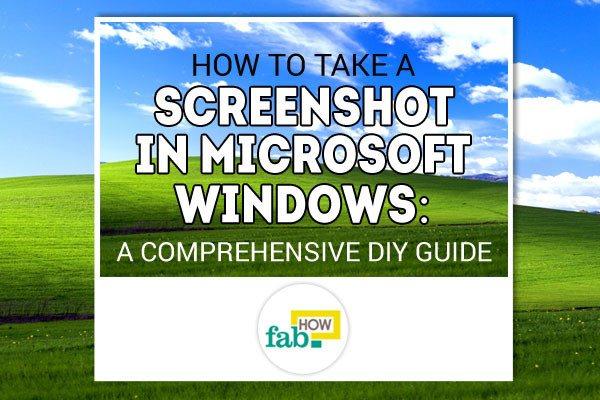Capture windows screenshot