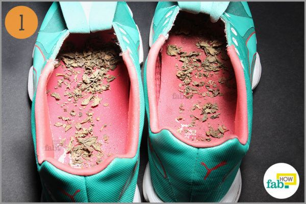 Dried sage leaves left overnight inside shoes
