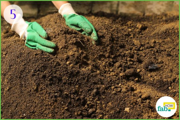 prepare the soil for replanting