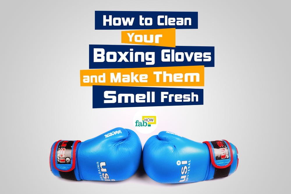 Keep boxing gloves clean and odor free