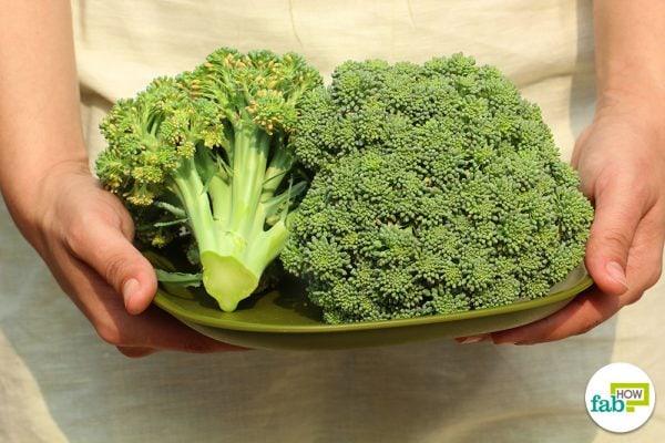 grow broccoli at home