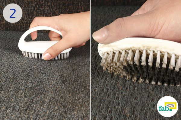 Brush the sofa