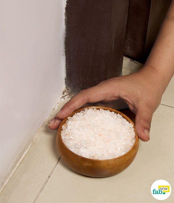 salt negative energy