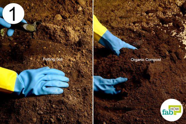 prepare soil
