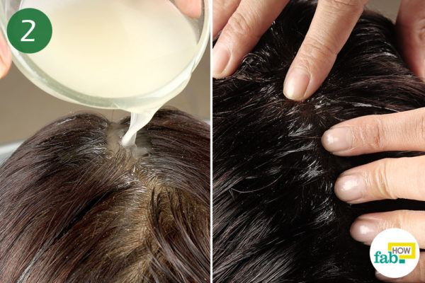 Step-2. Massage the camphor oil into the hair and let it sit