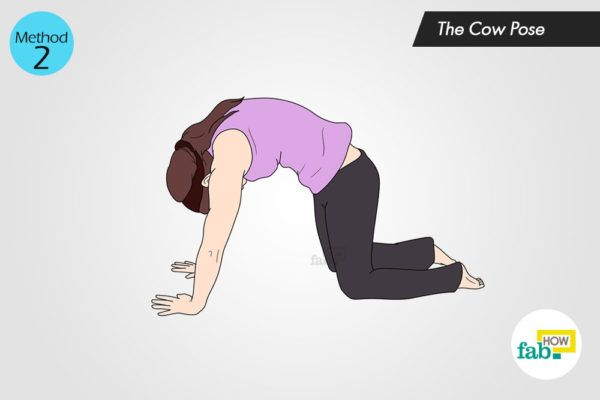 The Cow Pose