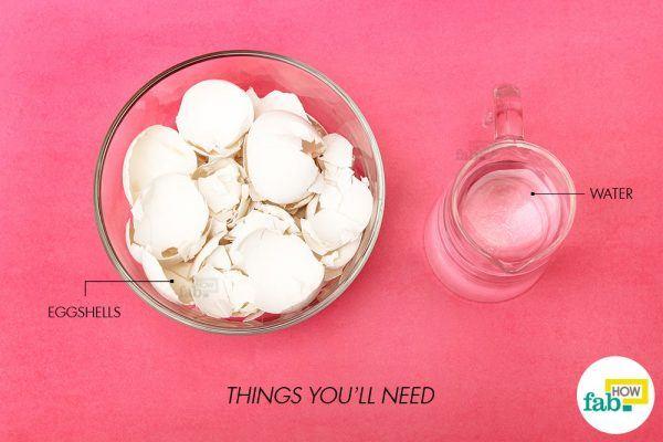 how to make eggshell calcium powder