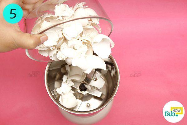 grind eggsheels into powder