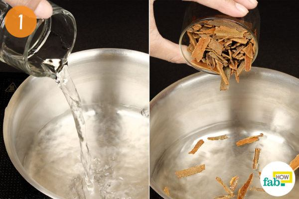 bring cinnamon sticks to a boil