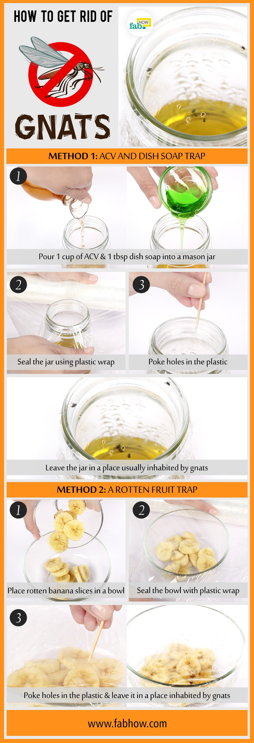 How to Make Homemade Traps to Instantly Get Rid of Gnats | Fab How