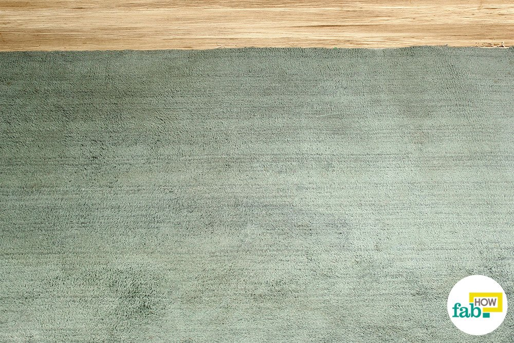 3 Methods to Clean a Carpet
