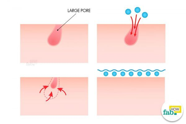 diagram of egg how to shrink and tighten large open pores naturally fab how