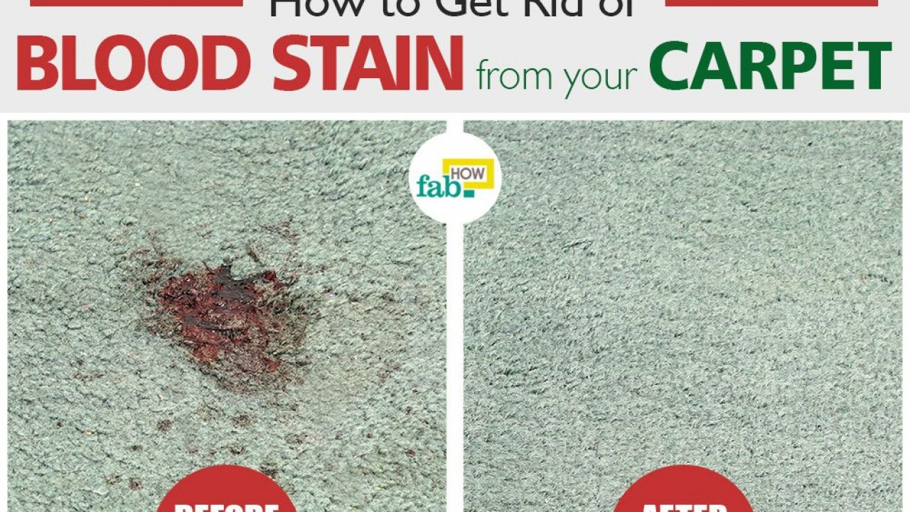 How To Get Blood Out Of Carpet 4 Easy Methods Fab
