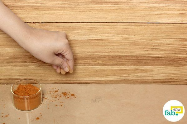 cinnamon powder to kill ants in your house