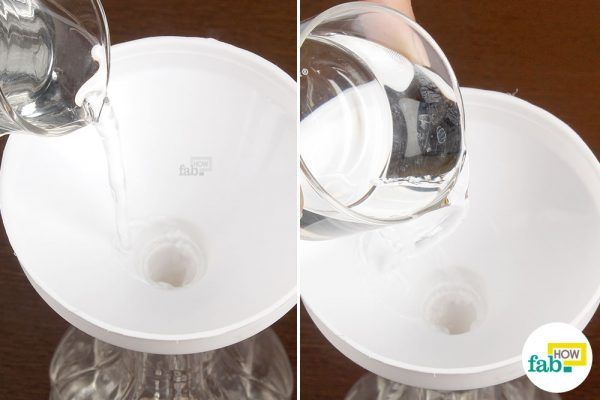 vinegar and water to get rid of ants
