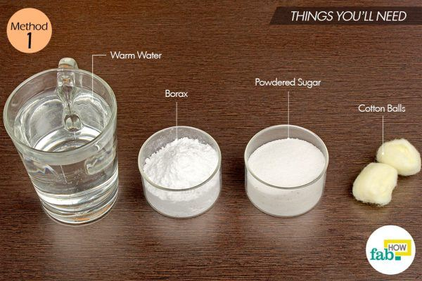 borax and sugar for ants
