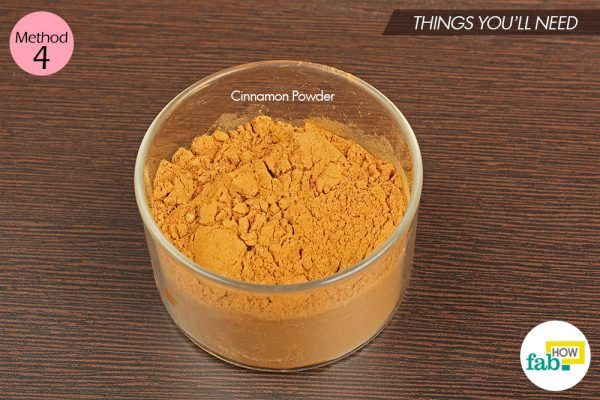 cinnamon powder to kill ants
