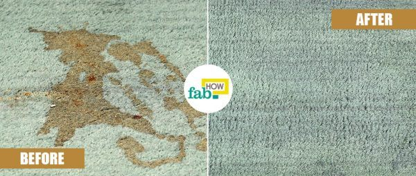 hydrogen peroxide to remove coffee stain from carpet