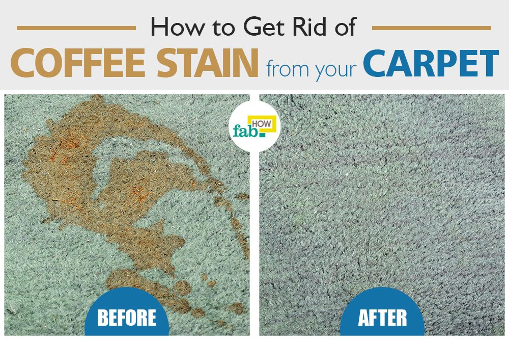 get rid of coffee stain from carpet