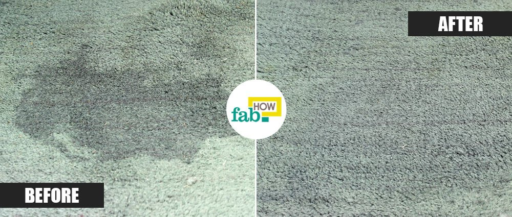 How To Remove Yellow Dog Urine Stains From Carpet Review