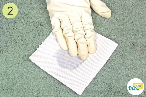 blot up any mositure to get vomit stains out of carpet