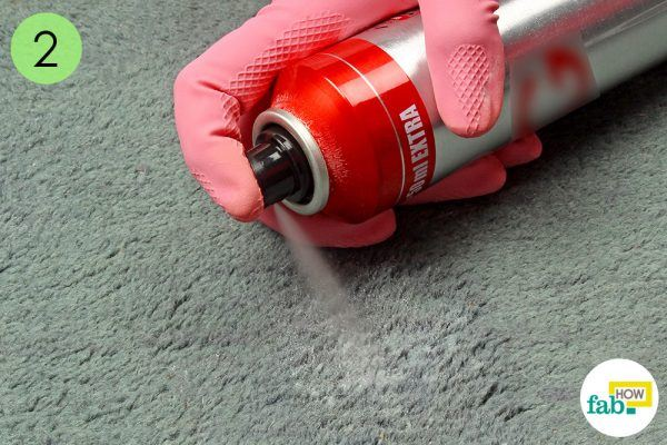 spray some hair spray over the stain on carpet