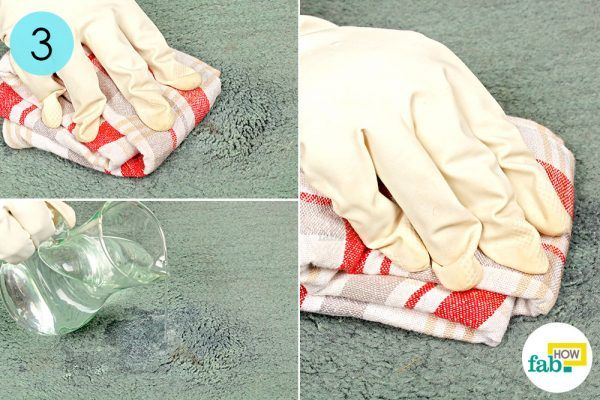 wipe, rinse and wipe vomit stain from carpet