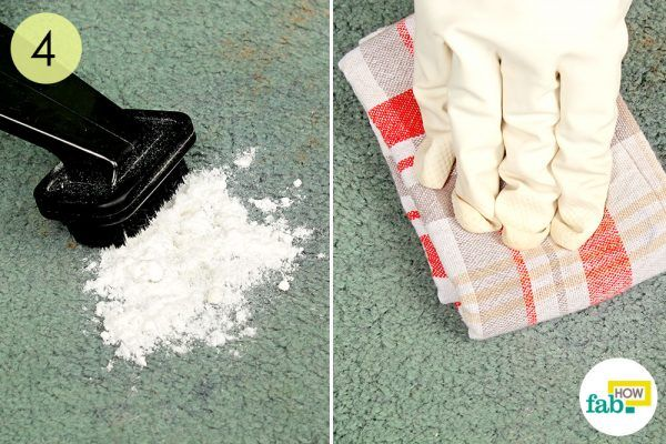 vaccum and wipe clean the carpet of vomit stains