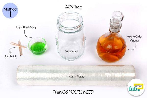 acv trap for flies things need