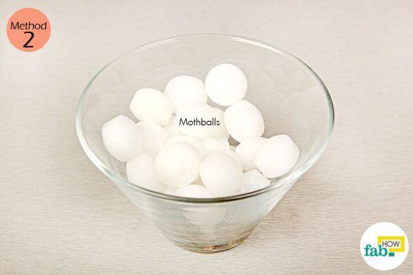 things need - moth balls