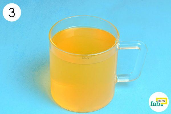 green tea and acv for weight loss