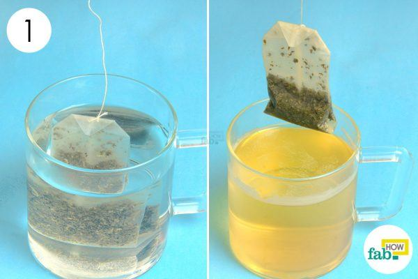 make green tea for weight loss