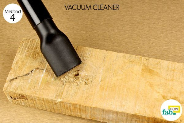 vaccum cleaner for carpeneter bees