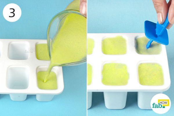 freeze the mixture in molds