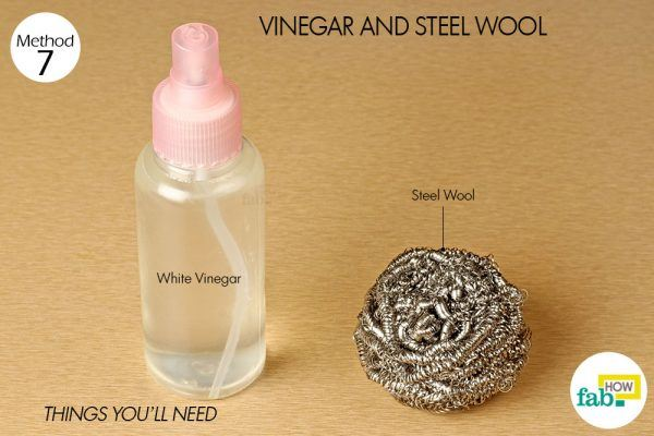 vinegar and steel wool for carpenter bees things need
