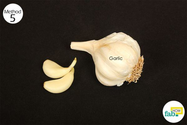 garlic for stuffy nose
