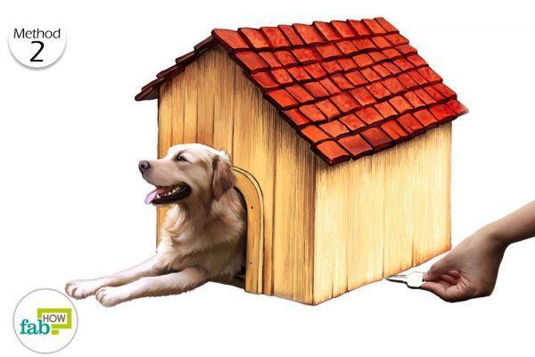 hide your keys under doghouse