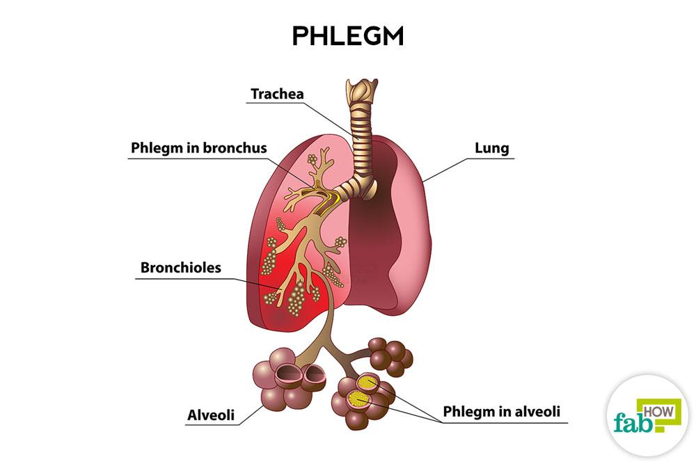 How To Get Rid Of Phlegm And Mucus In Chest Amp Throat